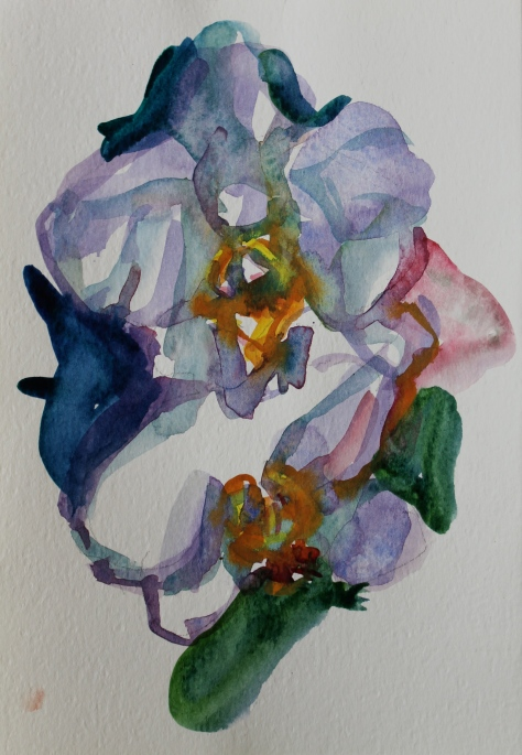 25 x 13 cm, watercolour, 2014